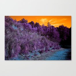 Not home planet alien landscape indigo purple orange surreallist Canvas Print