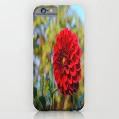 Dahlia iPhone 6s Slim Case