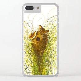 Nuttall's lesser-marsh Wren Clear iPhone Case