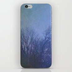 The Quiet of Winter iPhone & iPod Skin