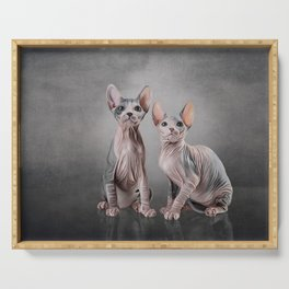 Drawing two cats Sphynx, hairless Serving Tray