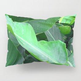 Poetic, Lyrical Palm Leaves Close-Up Art Pillow Sham