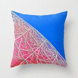 Rainbow Biosphere Mesh Throw Pillow
