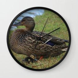 Mother Duck Wall Clock