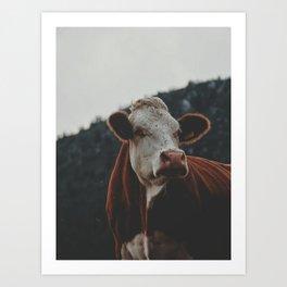 Proud Cow Art Print