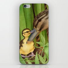 Little Lost Duckling iPhone & iPod Skin