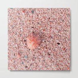 Pink sand Metal Print