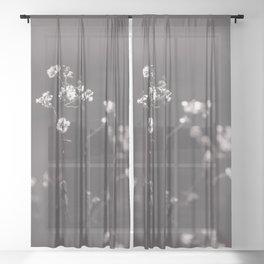 Wildflowers from Yesterday Sheer Curtain