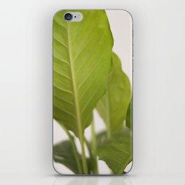 Hojas verdes (2) (green leafs) iPhone Skin