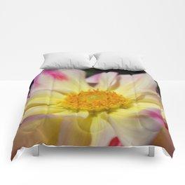 Full Bloom Comforters