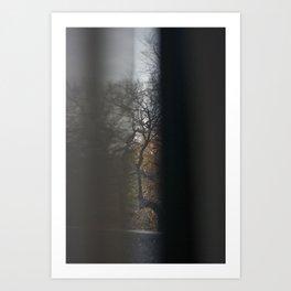 Trees #8 Art Print