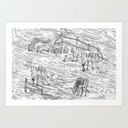 Grazing Longhorns Landscape Art Print