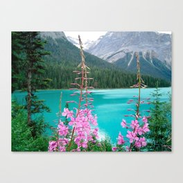 blue pink green Canvas Print