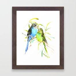 Budgies, love bird green blue decor Framed Art Print