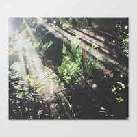 jungle Canvas Prints featuring Jungle by Luke Gram