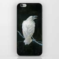 raven iPhone & iPod Skins featuring Raven by Jana Heidersdorf Illustration