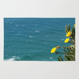 the earth ends and sea beggins Rug