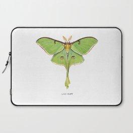 Luna Moth (Actias luna) II Laptop Sleeve