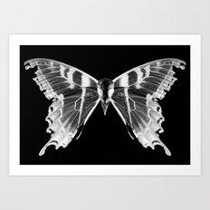 Wings and Skull #5 Art Print