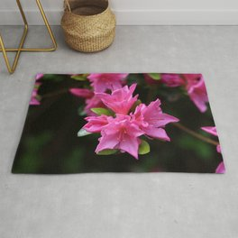 Pink Azelaea Spring Flowers Pretty Flowers Blossoms Nature Flora Rug