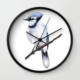 Winter Blue Jay Painting Wall Clock