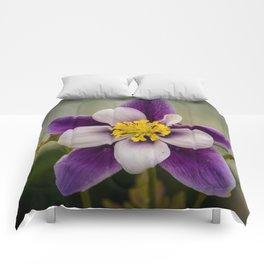 Columbine flower Comforters