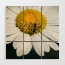 Hungry Bumble Bee Wood Wall Art