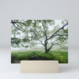 Imagination Itself Mini Art Print