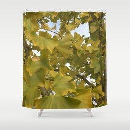 Ginkgo Biloba Tree Shower Curtain
