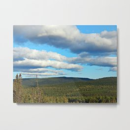 Vast Wilderness Metal Print