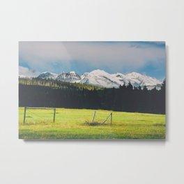 Glacier Park Meadow Metal Print