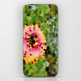 Barberton Daisy Crystallized iPhone Skin