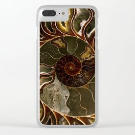 An Ancient Treasure Clear iPhone Case