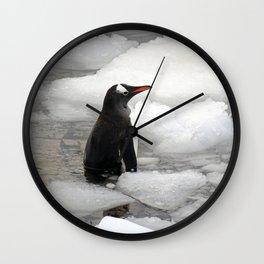 Gentoo Penguin in Ice Wall Clock