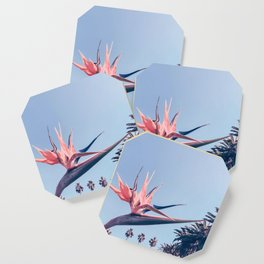 Birds of Paradise Print {3 of 3} | Palm Trees Ocean Summer Beach Cool Blue Photography Art Coaster