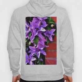 Beautiful purple flowerbush on the wall Hoody