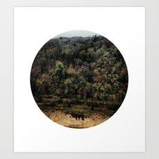 Telescope 11 gorge Art Print