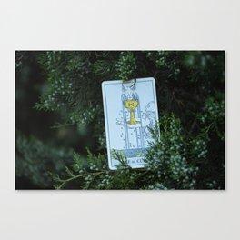 Tarot Canvas Print