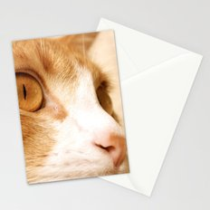 My cat Stationery Cards
