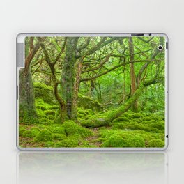 Emerald Forest Laptop & iPad Skin