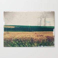 Summer Fields 3 Canvas Print