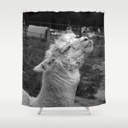 Llama joy Shower Curtain