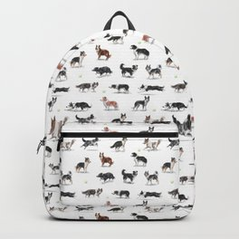 The Border Collie Backpack