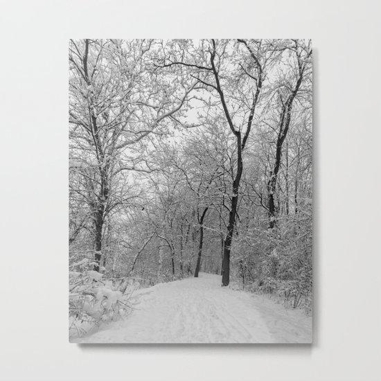 down the snowy path Metal Print