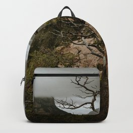 Colorful Mountaintop View with Withered Tree - Big Bend Backpack