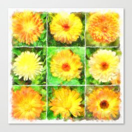 Watercolour Collage of Yellow And Orange Marigolds Canvas Print