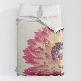 Flame Comforters