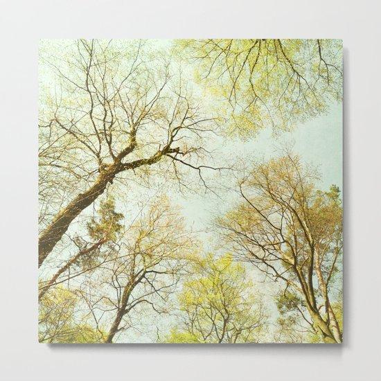 early spring treetops Metal Print
