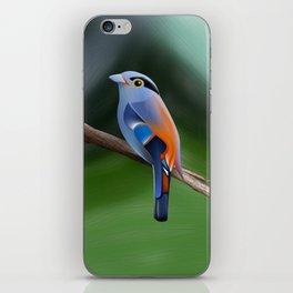 Silver-breasted broadbill Bird iPhone Skin