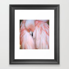 Flamingo #2 Framed Art Print